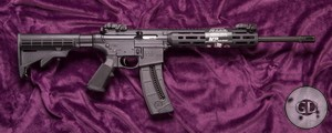 Smith&Wesson M&P 15-22 Sport